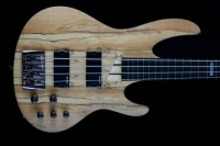 LTD B204SMFL Lined Fretless Spalted Maple