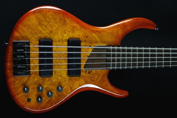 Eclipse 535w by Michael Tobias Burl Maple Burst